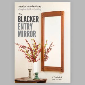 Blacker Entry Mirror e-book cover